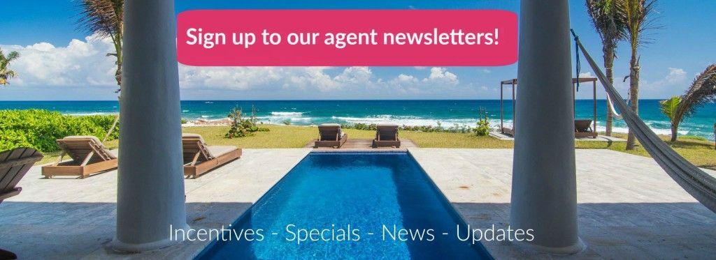 Agent Newsletter Banner