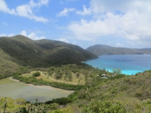 The Villa Collection Guana Island view