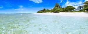 Palm Beach Apartments Barbados