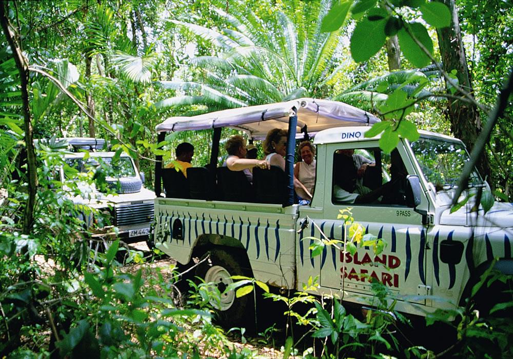 Barbados Saffari trip